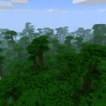 Джунгли, Jungle