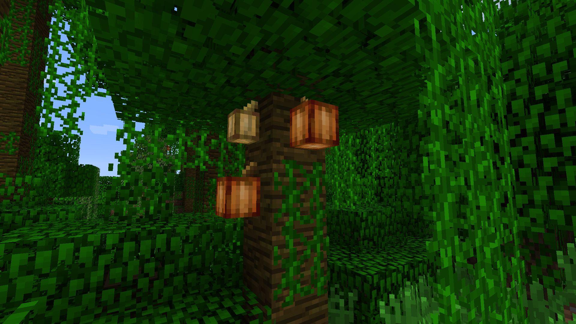 Какао деревья в Minecraft 1.3